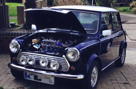 Blue Mini Project 2015